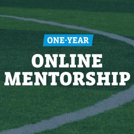 One-year online Mentorship